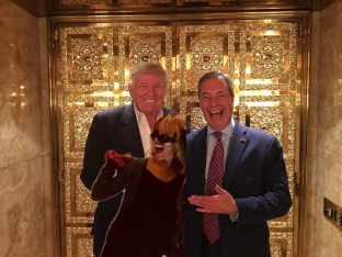 Nigel, Trump and Miss